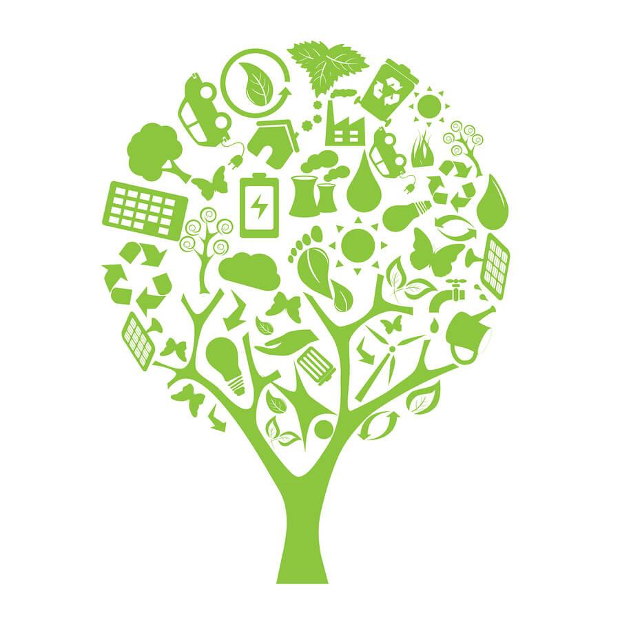 bigstock Green Eco Tree 12743999 1