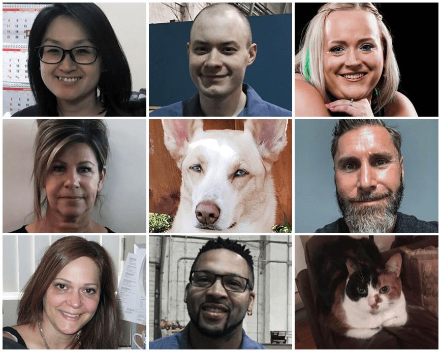 Who Is ECHOtape? | Meet the Team via ECHOtape